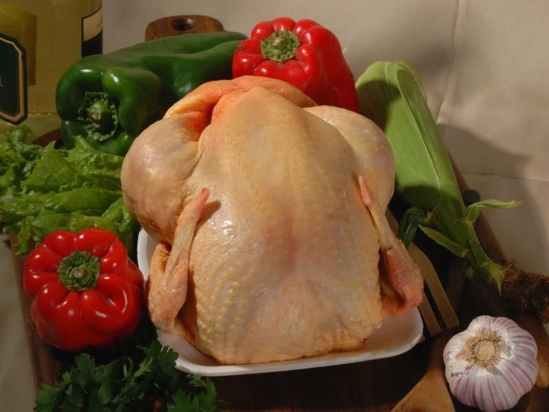 Imagen de pollo en precio del pollo