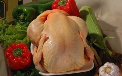 Precio del pollo al por mayor