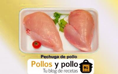 Pechuga de pollo: nuestras recetas blog